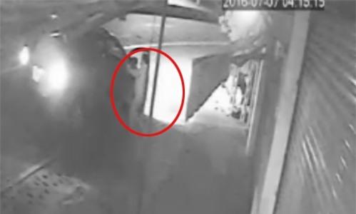 Bình Dương: 'Cẩu tặc' đi ôtô dùng súng điện bắn chó [VIDEO] - Ảnh 3