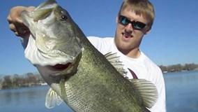 Câu được con cá khủng bằng tay trong 8 giây