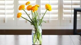 Bạn có biết, hoa tươi lâu nhờ rượu?