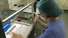 Đề nghị trả bảo hiểm y tế cho điều trị bằng tế bào gốc