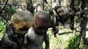 Vén bức màn bí ẩn đằng sau đảo búp bê ma quái ở Mexico