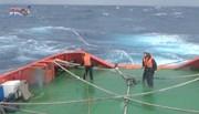 Ngư dân kể lại giây phút kinh hoàng trên biển