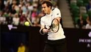 Thắng nhọc Raonic, Murray đại chiến Djokovic