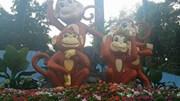 """Ngắm """"kỳ hoa, dị thảo"""" tại hội hoa xuân ở Sài Gòn"""