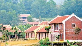 Chưa xác định rõ chủ đầu tư của khu nghỉ dưỡng xây trái phép ở Ba Vì