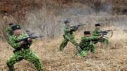 Triều Tiên tập trận tấn công quân sự Seoul