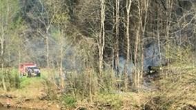 Trực thăng chở du khách bị rơi tại Mỹ, 5 người chết