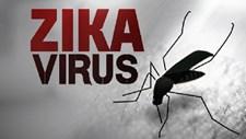 Virus Zika tại Việt Nam không giống ở Mỹ Latinh