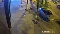 """""""Qúy ông"""" đi xế hộp dừng xe để trộm...gạch lát đường"""