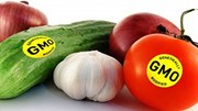 Thực phẩm biến đổi gen: An toàn hay nguy hiểm?