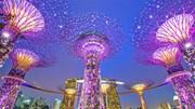 Bạn có dám chắc mình đã khám phá hết bí ẩn của Singapore?