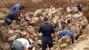 Hố chôn tập thể khổng lồ được phát hiện ở Mexico