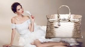 Ngọc Trinh sở hữu chiếc túi đắt nhất thế giới?