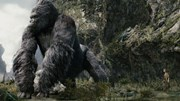 """Tiết lộ kích thước khổng lồ của Kong trong """"Skull Island"""""""