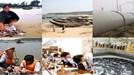 Toàn cảnh sự cố môi trường biển miền Trung