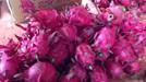 Giá thanh long tại Hà Nội đắt gấp 30 lần tại vườn