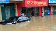 Bão Mirinae quét qua đảo Hải Nam, 3.000 cư dân phải sơ tán