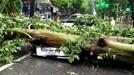Những hình ảnh gió mạnh bất thường bão số 1 tàn phá Hà Nội