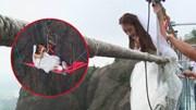 Thót tim với cảnh cô dâu liều mạng để tổ chức hôn lễ trên không