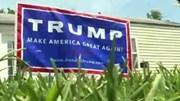 Biển hiệu ủng hộ ứng viên Donald Trump bị ăn cắp nhiều nhất