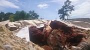 Chôn lén chất thải nghi độc hại trong khuôn viên... công ty môi trường