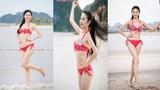 5 gương mặt tiềm năng cho vương miện Hoa hậu Việt Nam 2016