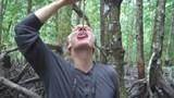 Rợn người đặc sản từ sinh vật đục thân cây kì quái