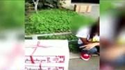 Cô gái trẻ giấu ma túy đá trong bánh trung thu rúng động Trung Quốc