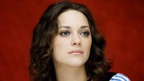 """Cotillard phủ nhận vai trò là """"người thứ 3"""" giữa Pitt và Jolie"""