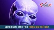 Người ngoài hành tinh thật sự trông như thế nào?