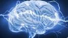 Bộ não 'lao động' thế nào trong 24 giờ?