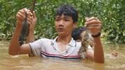 Ngụp lặn trong nước lũ săn món chuột đặc sản