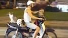 Báo Anh kinh ngạc thanh niên VN đi xe máy chở 4 chú mèo