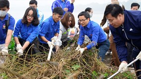 Phó Thủ tướng Vũ Đức Đam nhặt rác, trồng cây cùng sinh viên