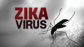 Vì sao thai phụ nhiễm Zika ở TPHCM sinh con không bị đầu nhỏ?