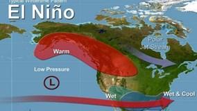 Hiện tượng El Nino mà thí sinh Ai là triệu phú nhầm lẫn là gì?