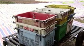 Phát hiện nhiều nguyên liệu làm hàng Tết không đảm bảo chất lượng