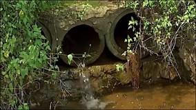Chậm xử lý hành vi gây ô nhiễm môi trường do doanh nghiệp... hết tiền