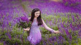 200 loài hoa khoe sắc ở thung lũng hoa Bắc Hà, Lào Cai