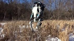Robot cứu nạn có dáng đi như con người