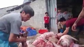 Triệt phá cơ sở chế biến thịt lợn thối thành 'đặc sản hun khói' ở Cao Bằng