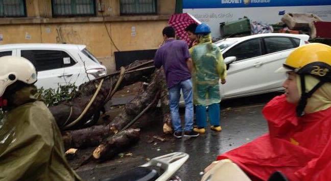 mưa lớn, giông lốc, Hà Nội, cây đổ đè ô tô