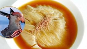 """Tận mắt chứng kiến món súp """"máu lạnh"""" nhất thế giới"""