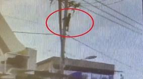 Thanh niên nghi ngáo đá 'làm xiếc' trên đường dây điện ở Sài Gòn