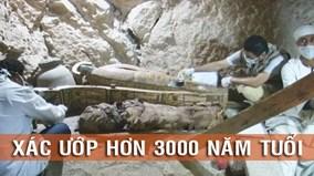 Tận mắt chứng kiến cảnh khai quật xác ướp hơn 3000 năm tuổi