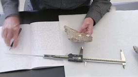 Phát hiện xương hóa thạch khiến lịch sử loài người có thể phải viết lại
