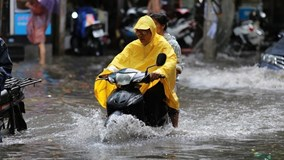 Cây đổ, đường ngập ở Hà Nội sau cơn mưa ngắn