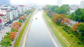 Vẻ đẹp nao lòng của những con đường hoa phượng đẹp nhất Hà Nội