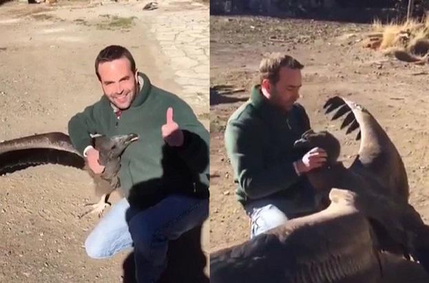 argentina: chim khong lo bay ve tham an nhan thuong xuyen hinh anh 1