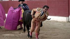 Khoảnh khắc bò tót nổi điên, húc thủng bụng đấu sĩ nổi tiếng